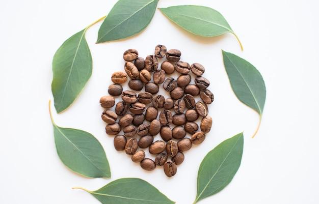Grãos de café com folhas de eucalipto como um círculo em uma superfície branca.