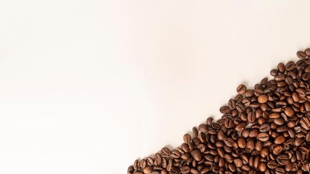Grãos de café de canto direito com espaço de cópia