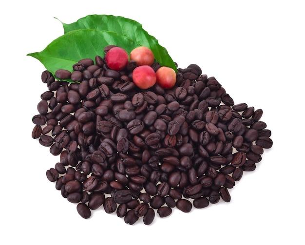 Grãos de café e café maduro isolados no branco.