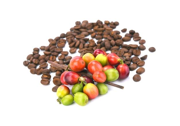 Grãos de café e café maduro vermelho isolados.