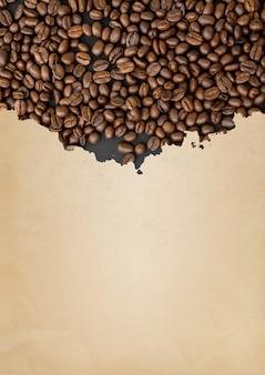 Grãos de café em papel rasgado