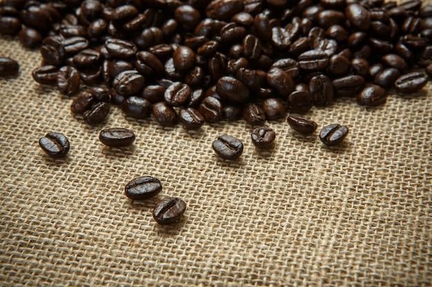 Grãos de café em tecido de serapilheira