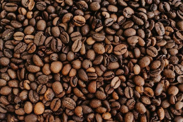 Grãos de café molhados