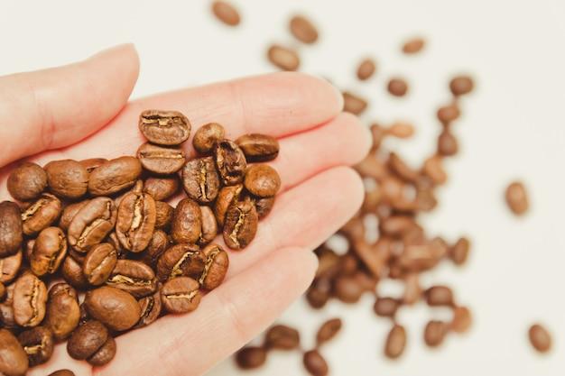 Grãos de café na mão de agricultores.