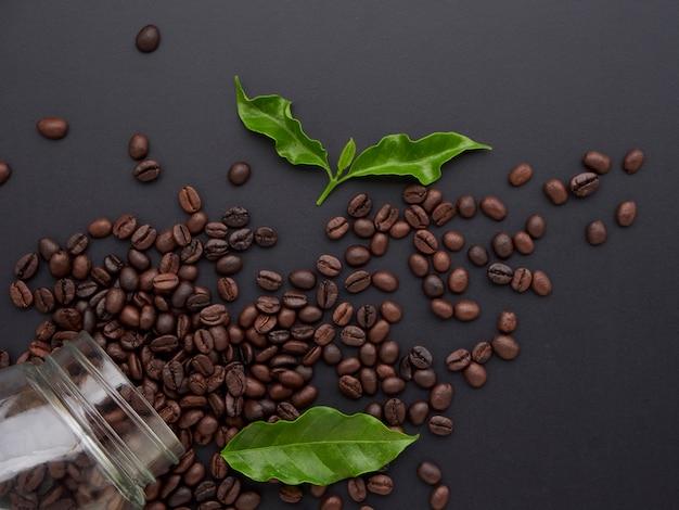 Grãos de café torrados com folhas