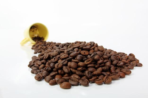 Grãos de café torrados no fundo branco