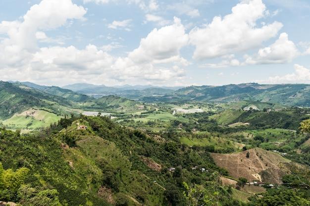 Grãos de café verde névoa agricultura fazenda colômbia