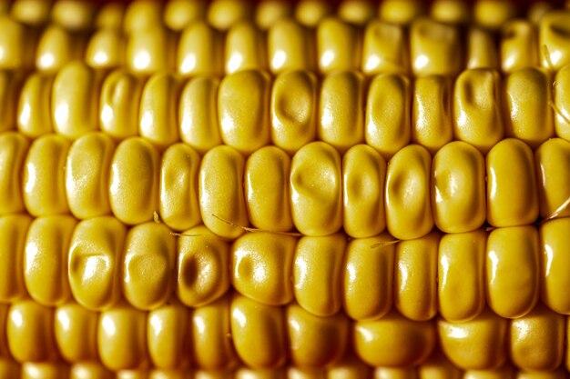 Grãos de milho close-up. milho maduro amarelo.