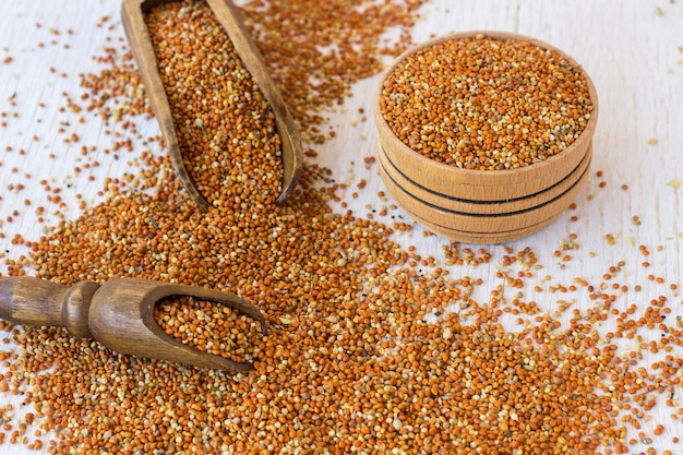 Grãos de painço em uma caixa de madeira e uma colher de pau. grãos de milho em um fundo branco