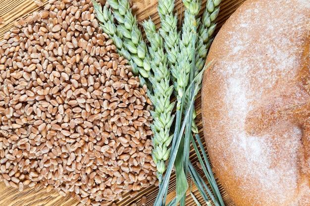 Grãos de trigo, espigas de trigo verdes e pão sobre uma mesa de madeira