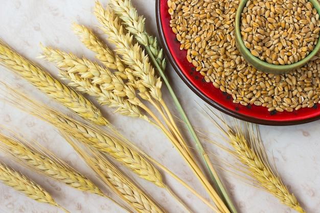 Grãos, espigas de trigo e cevada em um prato de cerâmica vermelha