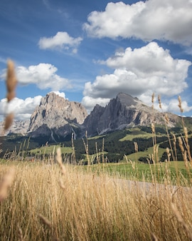 Grass e a montanha plattkofel em compatsch itália