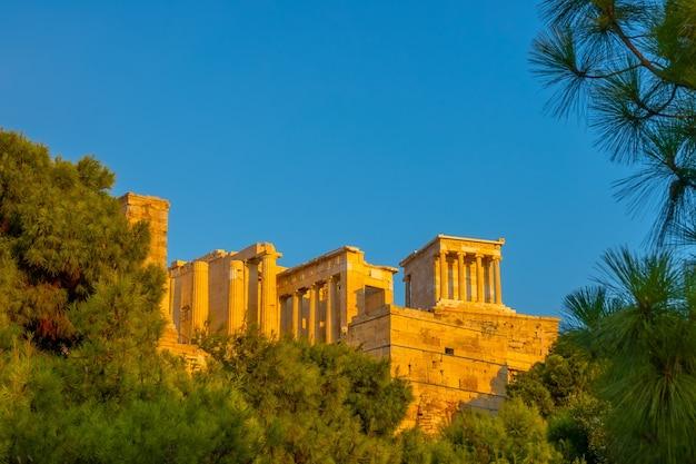 Grécia. atenas. céu sem nuvens de verão e luz do sol. entrada da acrópole rodeada de ramos de pinheiro