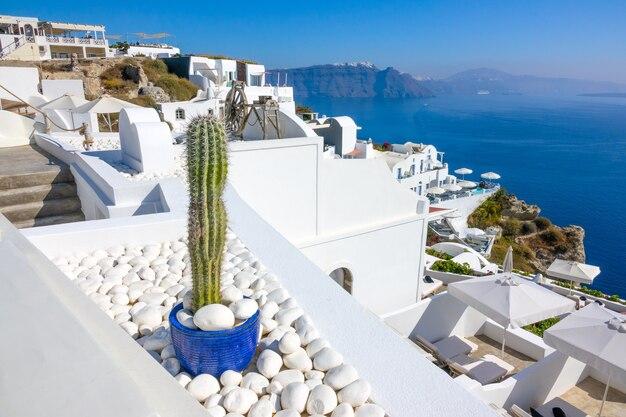 Grécia. casas brancas de oia em uma costa montanhosa de santorini em um dia ensolarado e um cacto decorativo em seixos brancos
