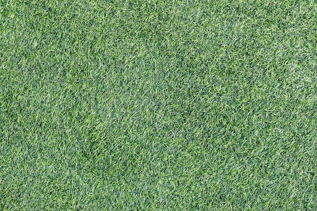 Green grass texture background campo de futebol