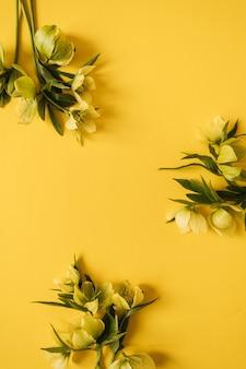 Grinalda com moldura redonda feita de flores de heléboro amarelo em amarelo