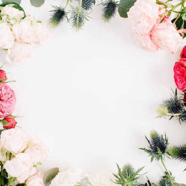 Grinalda de moldura redonda feita de flores rosas vermelhas e bege, flor de eringium, galhos de eucalipto e folhas no fundo branco. camada plana, vista superior