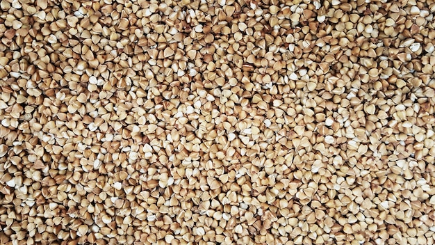 Grumos de trigo sarraceno, textura. muito trigo mourisco de perto.