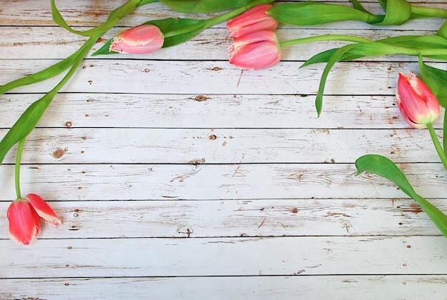 Grupo cor-de-rosa das tulipas nas pranchas de madeira brancas espaço vazio para a rotulação, texto, letras, inscrição.