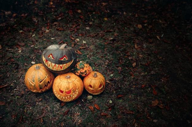 Grupo de abóboras de halloween