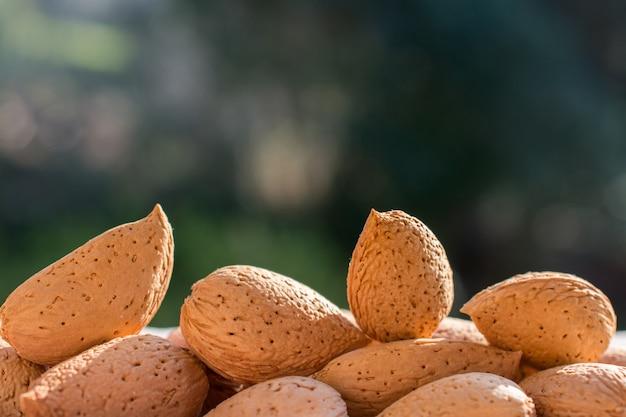 Grupo de amêndoas cruas, ingrediente principal para o nougat siciliano