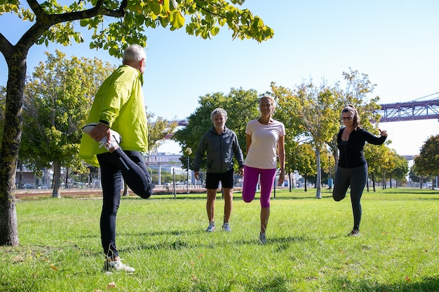 Grupo de aposentados ativos maduros vestindo roupas esportivas, fazendo exercícios matinais na grama do parque. aposentadoria ou conceito de estilo de vida ativo