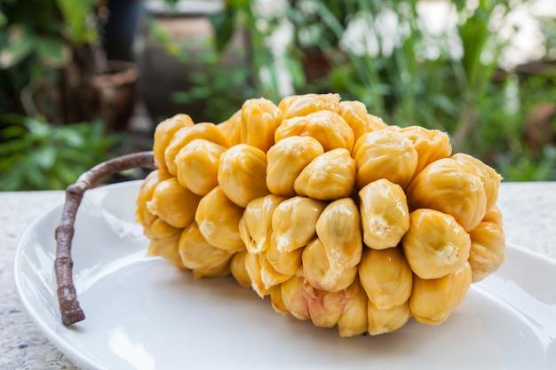 Grupo de arils chempedak frescos, uma fruta nativa da região sudeste da ásia.