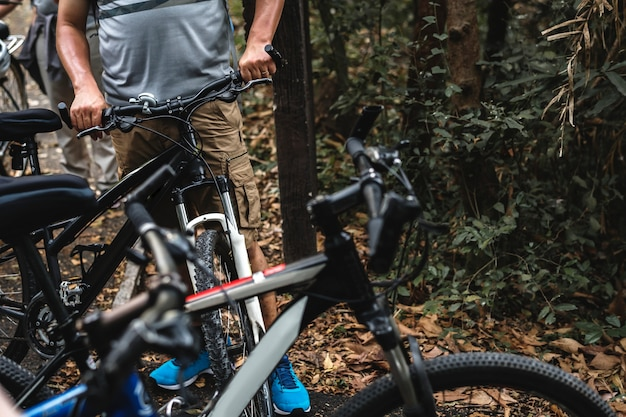 Grupo de bicicletas na floresta