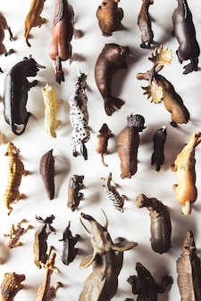 Grupo de brinquedos de animais isolados sobre fundo branco. brinquedos de animais.