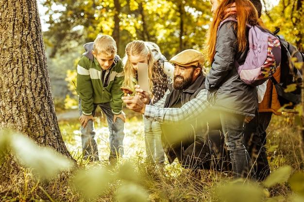Grupo de crianças aprendendo sobre cogumelos na floresta em um dia bom