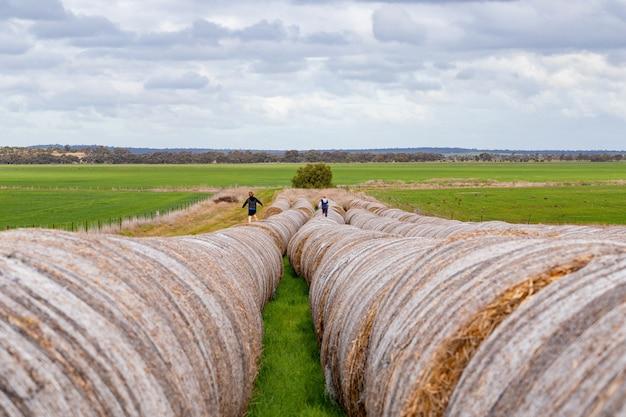 Grupo de crianças correndo em uma longa fila de fardos de feno redondos em um dia nublado e céu nublado