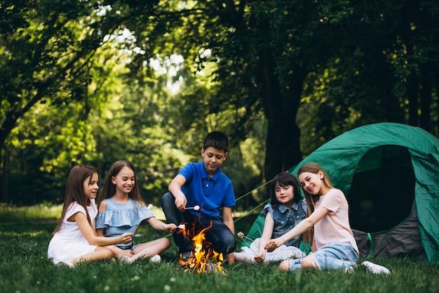 Grupo de crianças na floresta pela fogueira com mushmellows