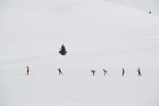Grupo de esquiadores cross country treinando em uma estação de esqui