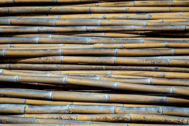 Grupo de fundo de bambus. pilha de textura de polo de bambu com padrão natural.