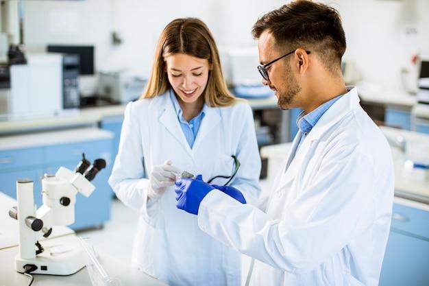 Grupo de jovens pesquisadores analisando dados químicos em laboratório