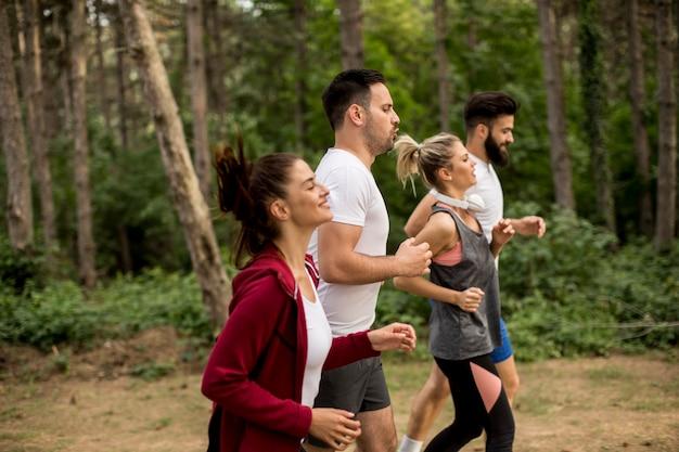 Grupo de jovens uma maratona pela floresta