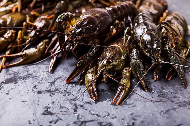 Grupo de lagostins frescos no fundo escuro de ardósia