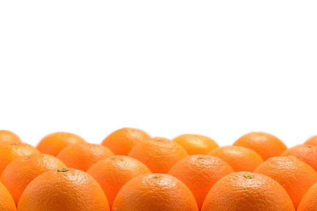Grupo de laranjas em uma fileira, isolado na superfície branca