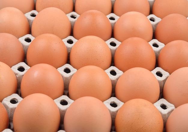 Grupo de ovos frescos na bandeja de papel