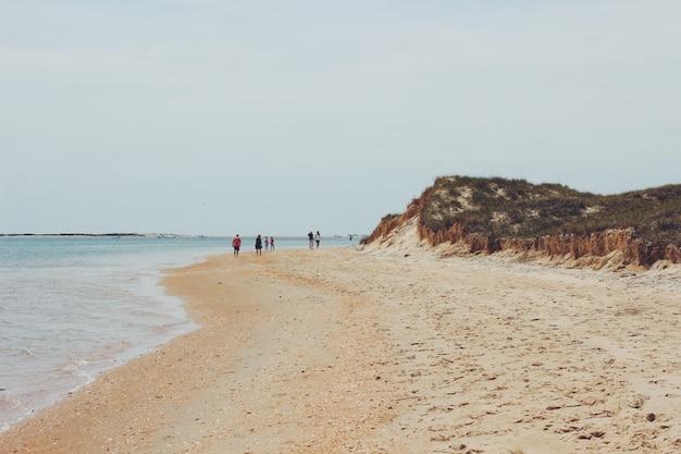 Grupo de pessoas caminhando na praia ao lado da praia