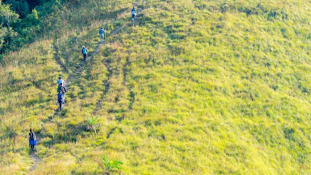 Grupo de pessoas que caminha no vidro verde da paisagem da montanha alta da colina na vista de elevação.