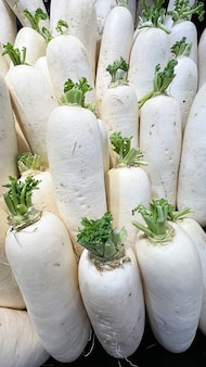 Grupo de rabanete branco no supermercado.