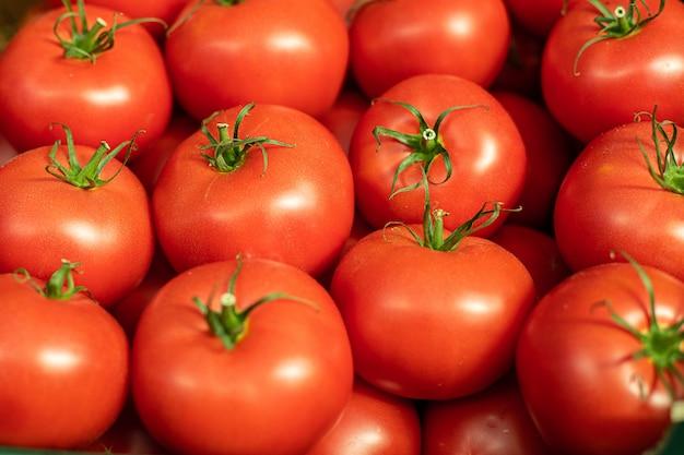 Grupo de tomates frescos e vermelhos