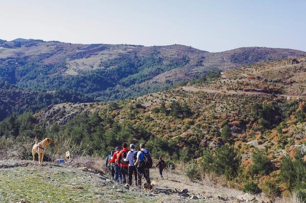 Grupo de trekkers e cães andando nas montanhas