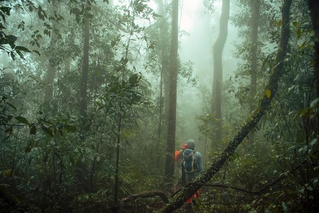 Grupo de trekking na selva tropical. aventura e explorador.