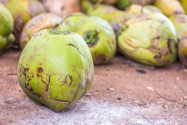 Grupo, de, verde, cocos