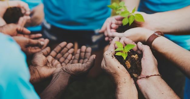Grupo de voluntários com broto para crescer