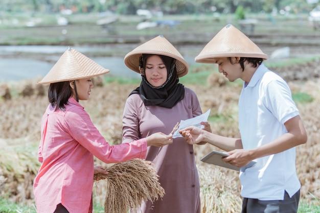 Grupos de agricultores asiáticos observam as safras de arroz que eles colhem após a colheita juntos nos campos
