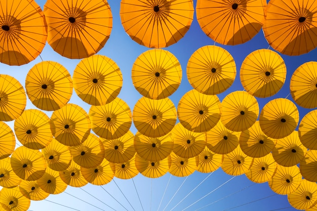 Guarda-chuva antigo norte da tailândia