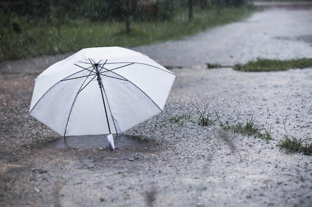 Guarda-chuva branca na chuva